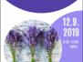 12.9.1019 Setkávání u ručních prací – Obrázky ze sušených květin